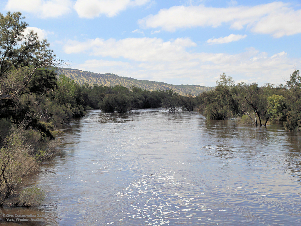 Photo: Avon River in flood, tree lined riverbanks, Dyott Range in distance