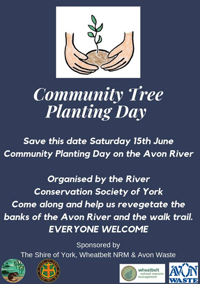 Flyer advertising York community tree planting day.